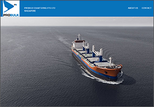 ship chartering singapore
