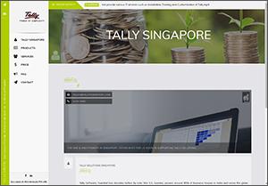 tally singapore